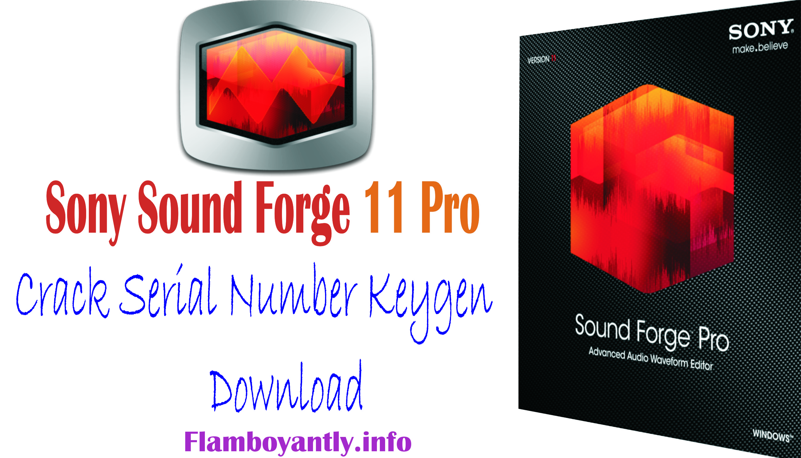 Sony Sound Forge 11 Pro Crack Serial Number Keygen Download