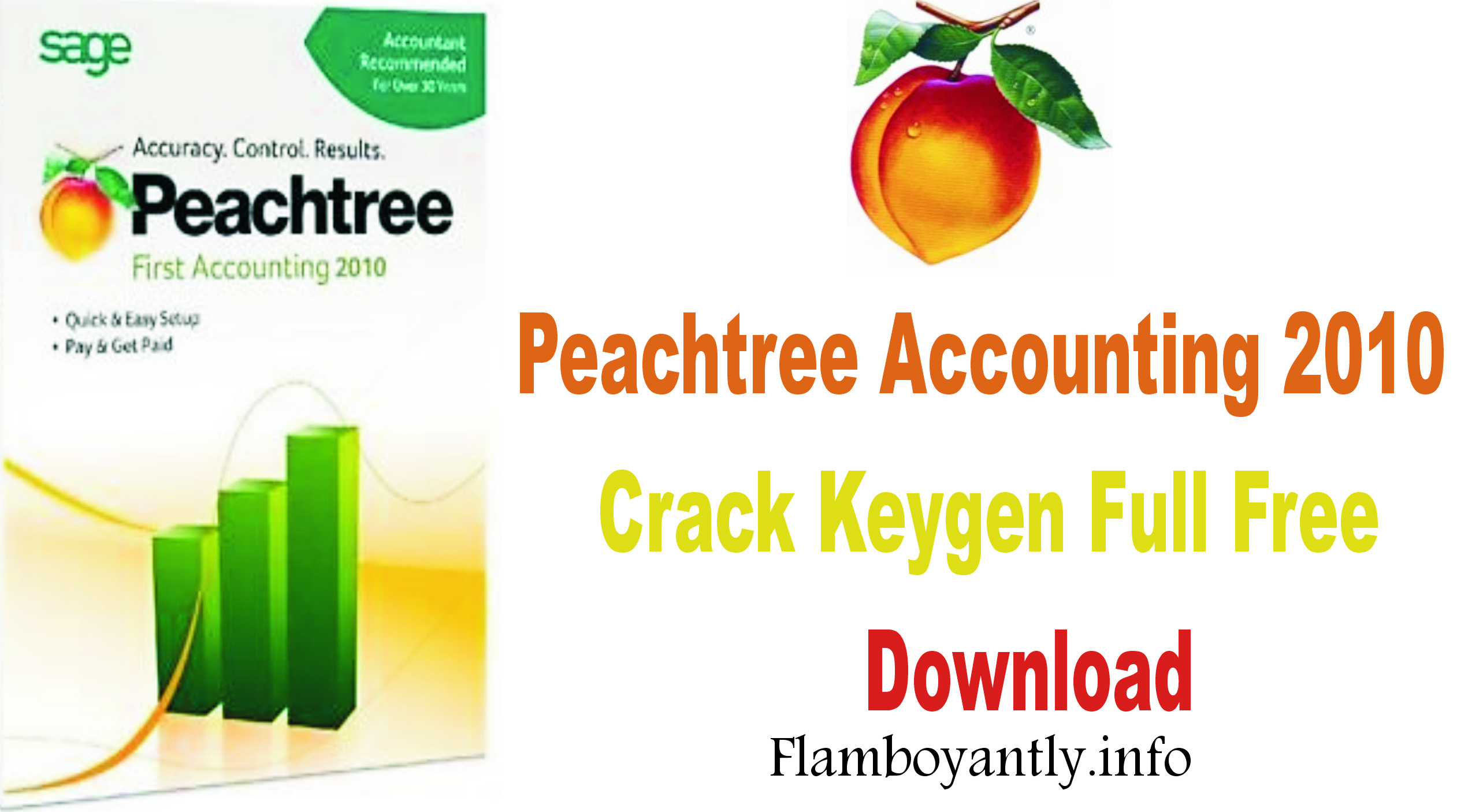 Peachtree Accounting 2010 Crack Keygen Full Free Download
