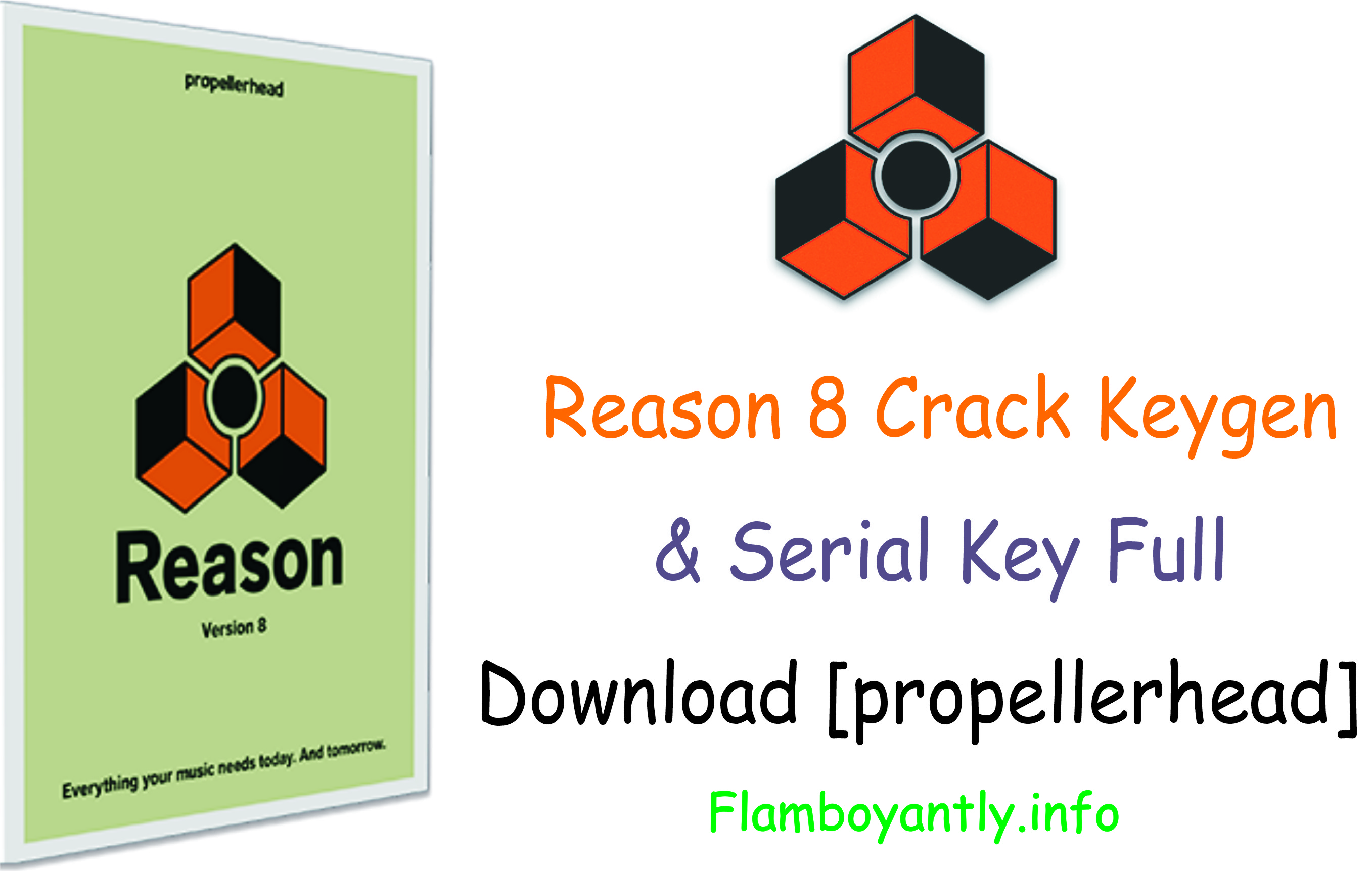 Reason 8 Crack Keygen & Serial Key Full Download [propellerhead]