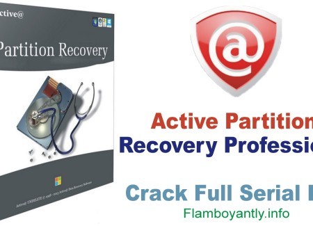 Active Partition Recovery Professional 14 Crack Full Serial Key